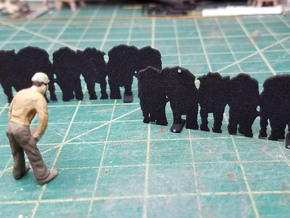 1-20.3 Cattle  2017.01.23 in Black Natural Versatile Plastic
