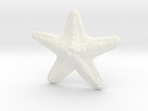 Starfish paperweight in White Processed Versatile Plastic