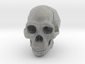 Lanyard : Real Skull (Homo erectus) in Metallic Plastic