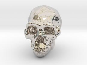 Lanyard : Real Skull (Homo erectus) in Platinum