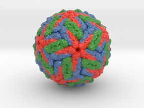 Dengue Virus in Coated Full Color Sandstone: Small