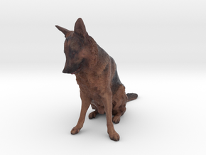 German Shepherd Dog in Full Color Sandstone