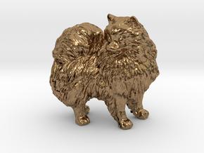 Custom Pomeranian Dog in Natural Brass