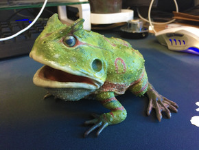 Beelzebufo middle size(color) in Coated Full Color Sandstone