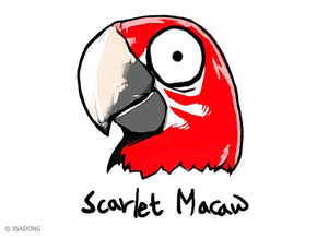 Breedingkit Scarlet Macaw in Full Color Sandstone