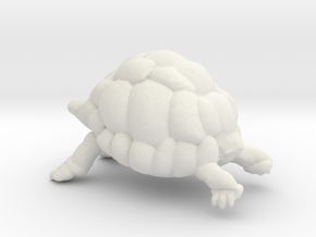 Printle Thing Turtle - 1/24 in White Natural Versatile Plastic