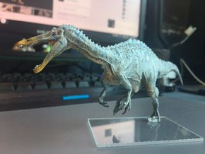Suchomimus (Medium / Large size) in White Natural Versatile Plastic: Medium