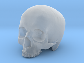Skull Top scale 1/6 in Smooth Fine Detail Plastic