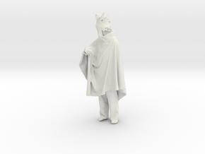 Printle C Homme 675 - 1/24 - wob in White Natural Versatile Plastic