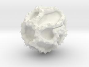 Taraxacum in White Natural Versatile Plastic