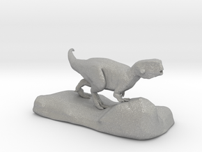 Psittacosaurus sculpture in Aluminum