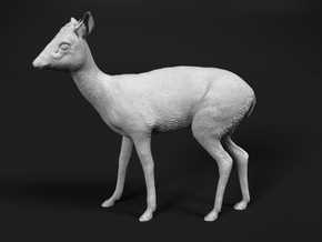 Kirk's Dik-Dik 1:12 Standing Male in Smooth Fine Detail Plastic
