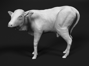 Ankole-Watusi 1:45 Calf in Smooth Fine Detail Plastic