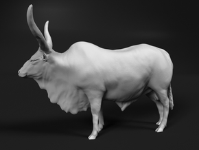 Ankole-Watusi 1:20 Standing Male in White Natural Versatile Plastic