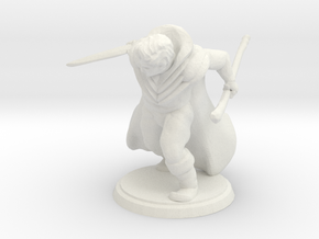 Warrior Wizard in White Natural Versatile Plastic