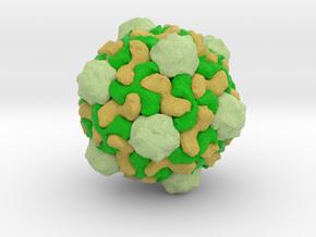 Tobacco Ringspot Virus in Full Color Sandstone
