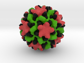 Melon Necrotic Spot Virus in Full Color Sandstone