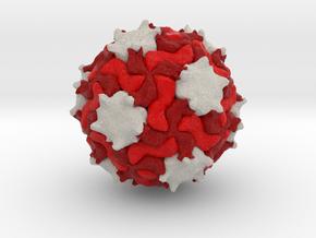 Triatoma Virus in Full Color Sandstone