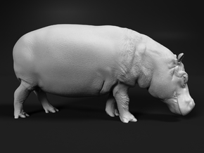 Hippopotamus 1:72 Walking Female in Smooth Fine Detail Plastic