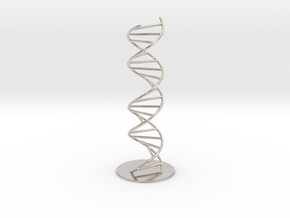 DNA Molecule Model Pedestal, Several Size Options in Rhodium Plated Brass: 1:10