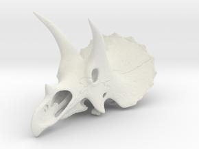 Triceratops - dinosaur skull replica in White Natural Versatile Plastic: 1:16