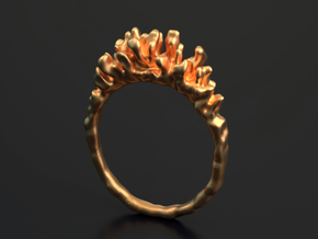 Coral Ring II in Polished Brass