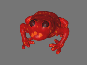Valentines Heart Frog in Full Color Sandstone