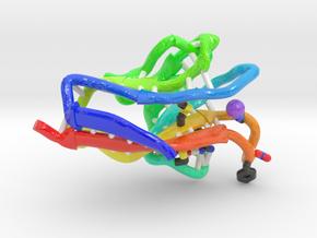 Hepatitis A Virus Cellular Receptor 1 in Glossy Full Color Sandstone