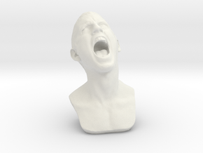 Screaming for Help (The Stolen Scream) in White Strong & Flexible