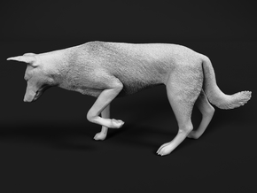 Saarloos Wolfdog 1:6 Female stalks small prey in White Natural Versatile Plastic