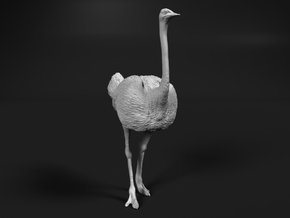 Ostrich 1:32 Standing Calm in White Natural Versatile Plastic