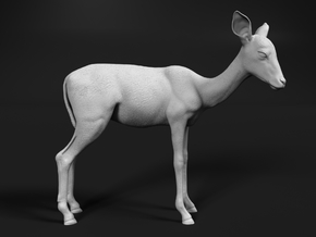 Impala 1:20 Female Juvenile in White Natural Versatile Plastic