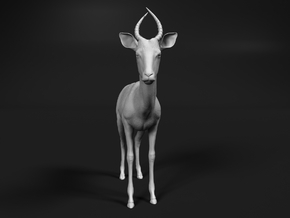 Impala 1:25 Male Juvenile in White Natural Versatile Plastic