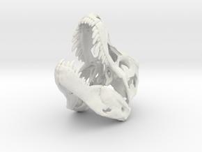 Tyrannosaurus skull (1:15 / 1:10) in White Natural Versatile Plastic: 1:10