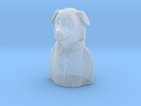 Border Collie Researcher Pandemic  in Smooth Fine Detail Plastic