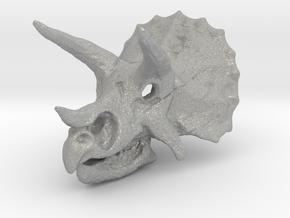 Triceratops Dinosaur Skull Pendant in Aluminum