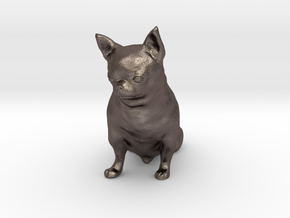 Scanned Chihuahua Dog -887 in Polished Bronzed Silver Steel