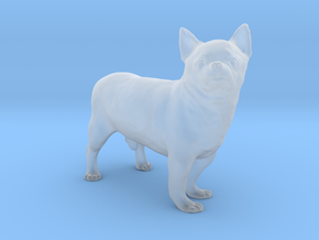 Scanned Chihuahua Dog -890 in Smooth Fine Detail Plastic