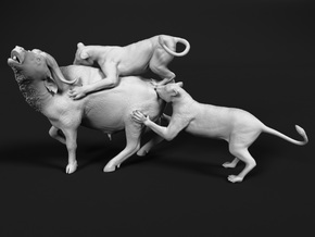 Cape Buffalo 1:32 Attacked by Lions in White Natural Versatile Plastic