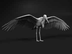 Marabou Stork 1:6 Wings Spread in White Natural Versatile Plastic