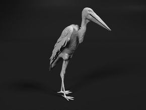 Marabou Stork 1:20 Standing in Smooth Fine Detail Plastic