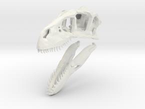 1:35 Utahraptor skull in White Natural Versatile Plastic