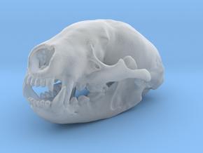 BADGER Skull Pendant in Smooth Fine Detail Plastic