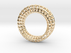 Voronoi Mobius #1 in 14k Gold Plated Brass