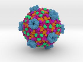 Cytoplasmic Polyhedrosis Virus in Full Color Sandstone