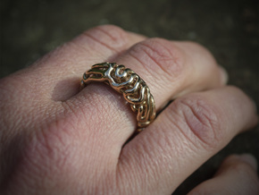 Reaction Diffusion Ring 5, Size 60  in Polished Brass