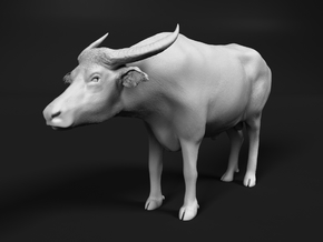 Domestic Asian Water Buffalo 1:9 Standing Male in White Natural Versatile Plastic