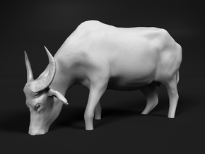 Domestic Asian Water Buffalo 1:64 Grazing in Water in Smooth Fine Detail Plastic