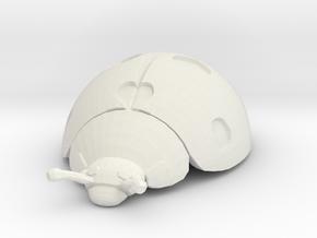 Ladybug in White Premium Versatile Plastic