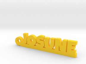 JOSUNE_keychain_Lucky in Polished Brass
